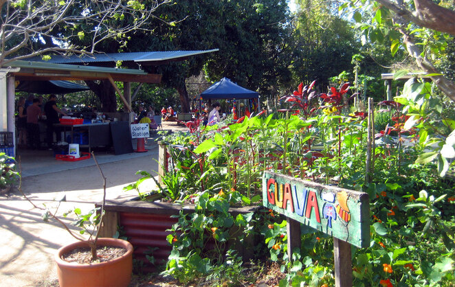 These markets are located in the Northey Street City Farm and some of the products come from the farm