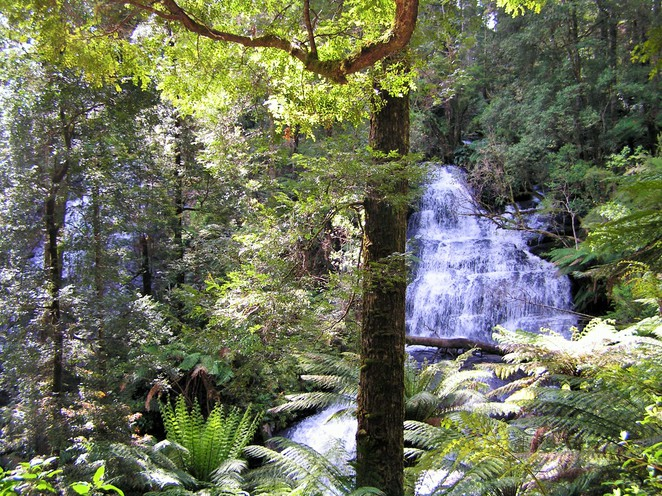 places to visit in Victoria,day trips from Melbourne,weekend getaways,day trips Victoria,long weekend,weekend getaways Melbourne,great ocean road,Apollo bay,12 apostles,otway, otway ranges, waterfalls, triplet falls,