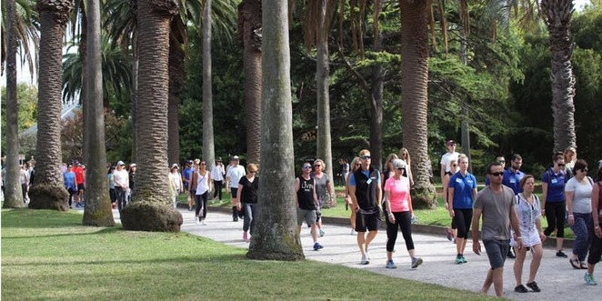 Walks, Charity, Health & Fitness, Melbourne, Fun Things to Do, Family