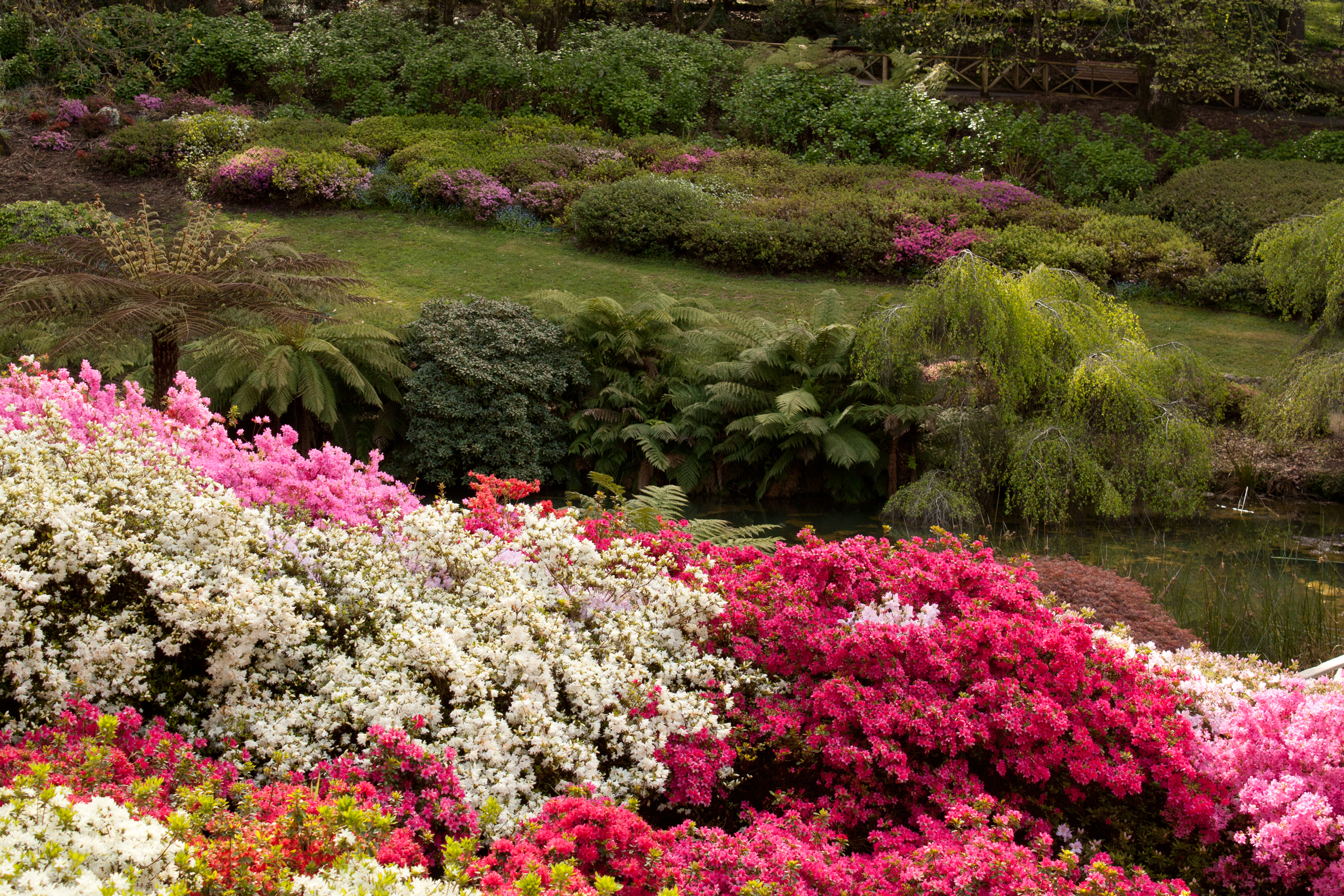 10 top gardens in greater melbourne - melbourne