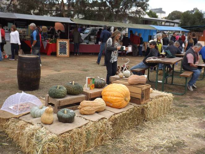 biggest pumpkins, fresh produce, fresh food, organic food, markets, country markets, Wirrabara Producers Market, southern Flinders Ranges, South Australia