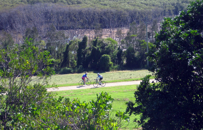 Cyclists at Boondall Wetlands