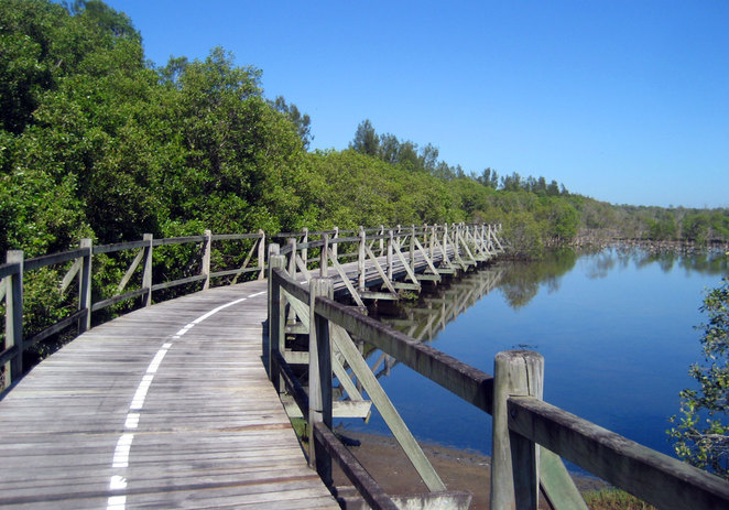 Boardwalk in the Boondall Wetlands