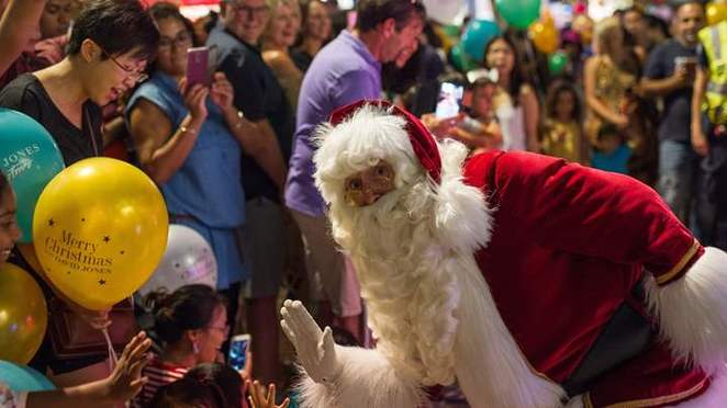 christmas events in brisbane 2018, christmas in the city 2018, christmas in Brisbane 2018, family christmas events brisbane, free christmas events brisbane, lighting of the christmas tree brisbane, christmas parade brisbane