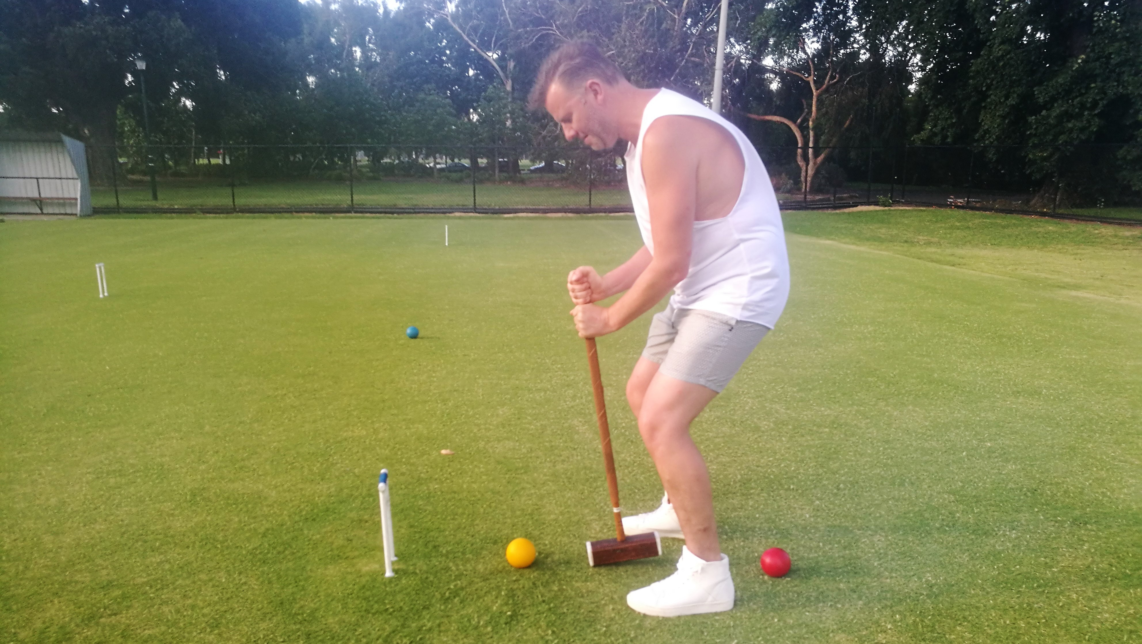 Croquet game