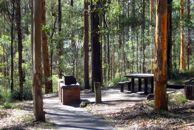 One of the many barbecues at Daisy Hill Conservation Park