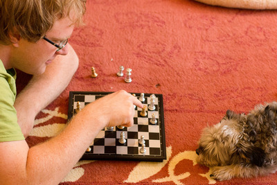 dog chess games game fun
