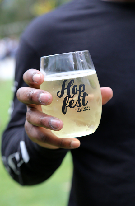 food and beer festival, food stalls, cider, local brewers, Healesville sanctuary, native animals, live music, event, Yarra valley craft beer and cider, gourmet food, street food, family day, picnic, animals, kid friendly