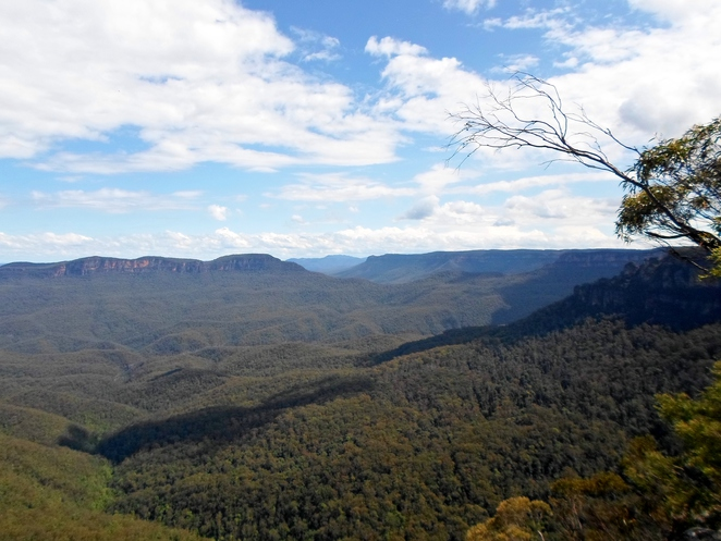 gordon falls lookout, jamison valley lookout, leura lookout, blue mountains lookout