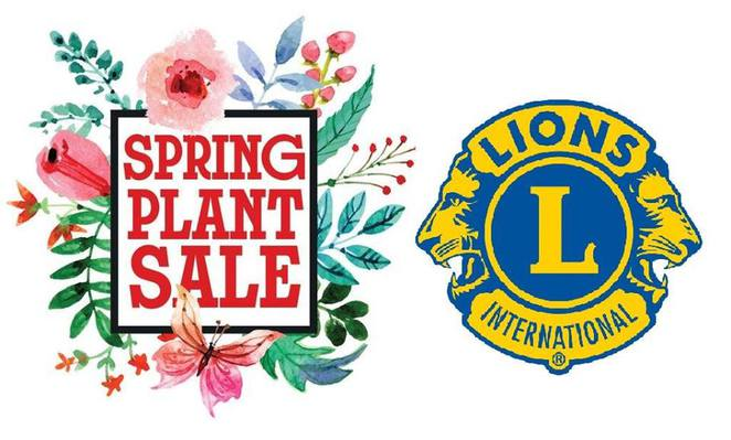 Lions club, plant sale, natives, edible, father's day, ornamental, fundraising, donvale cricket club, spring, plants