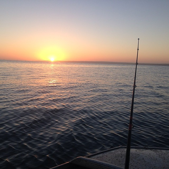 Geelong and the bellarine 39 s best fishing spots geelong for Bay area fishing spots