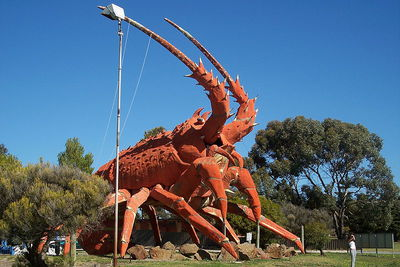 the big lobster, big thing, lobster