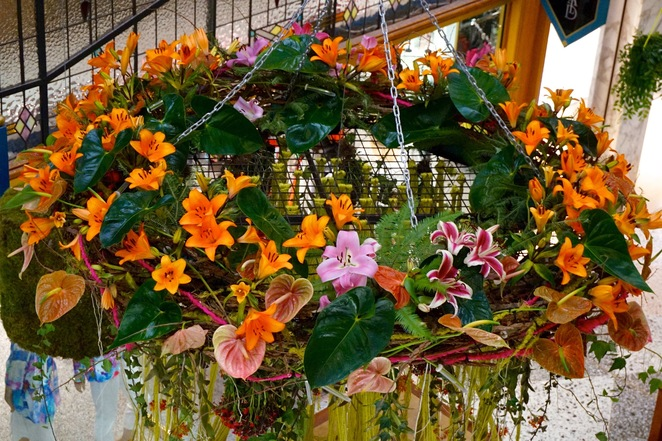 The Brisbane Arcade spring flower show