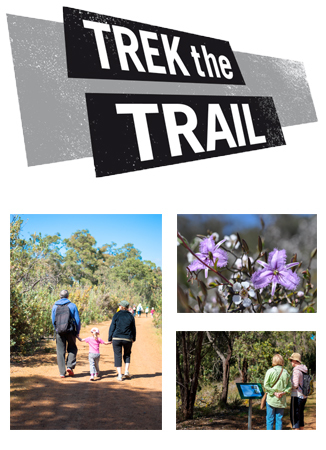 Image courtesy of the Trek the Trail website