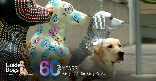 Art Space on The Concourse, City of Willoughby, 60 Tails 60 Years of Guide Dogs