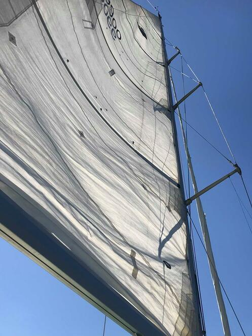 asail, yacht charters, learn to sail, sydney harbour, sailing, boat, mains
