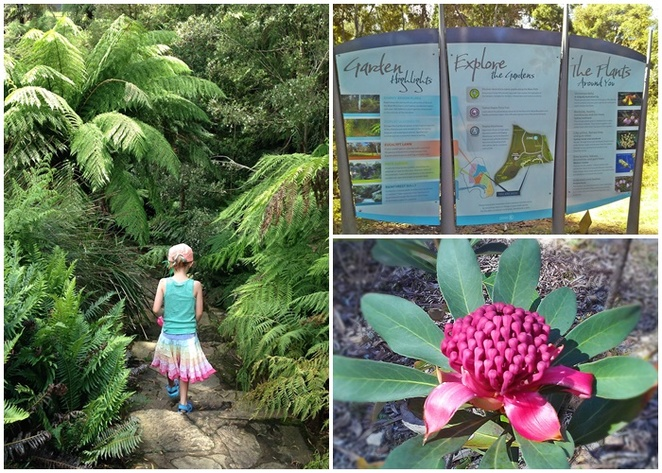 australian national botanical gardens, free tours, walks, guided tours, whats on, groups, free, things to do, families, trails,
