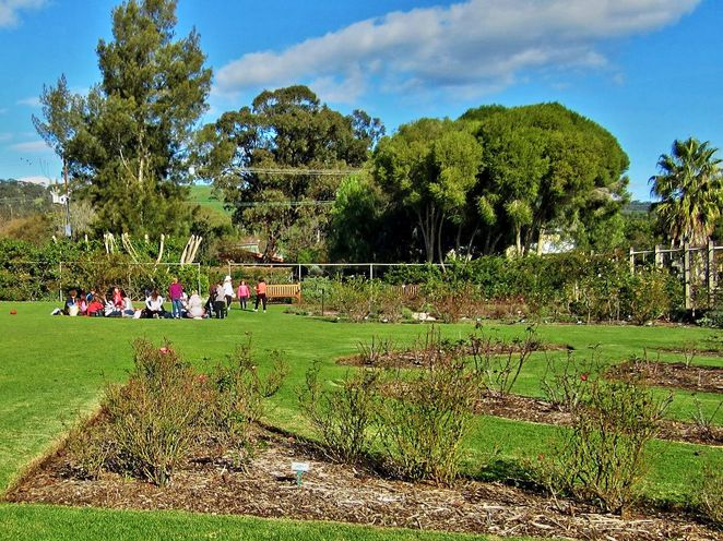 awesome adventures, adventures in south australia, history festival, south australia, heritage, adelaide, adventures, fun, scavenger hunt, urrbrae house