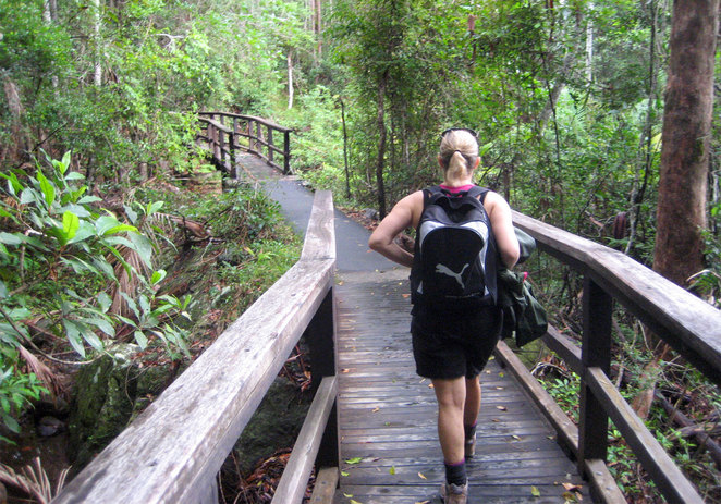 There many fun and easy walks around South East Queensland
