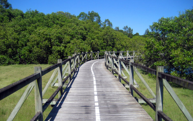 The cycle path at Boondall Wetlands