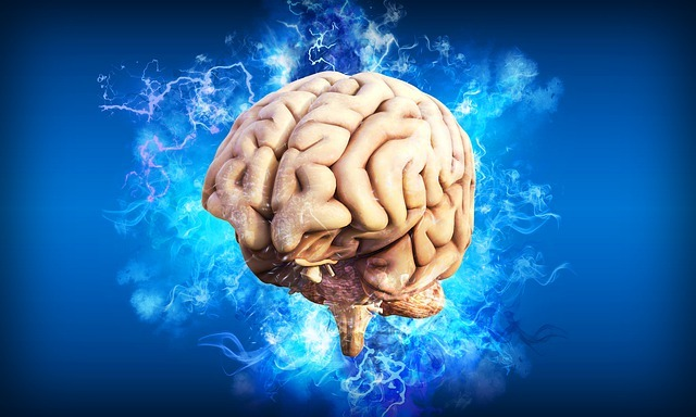 brain, mind, clever, smart, song, music