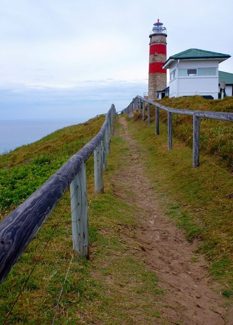 The Cape Moreton Lighthouse is an ideal spot close to North Point Campground to watch the whale migration from