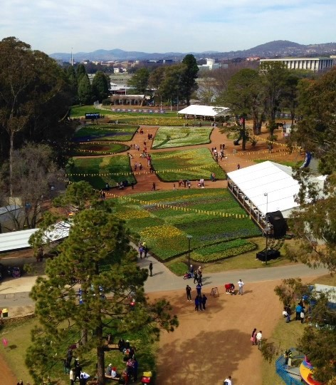 floriade, commonwealth park, canberra, ACT, things to do, nerang pool,