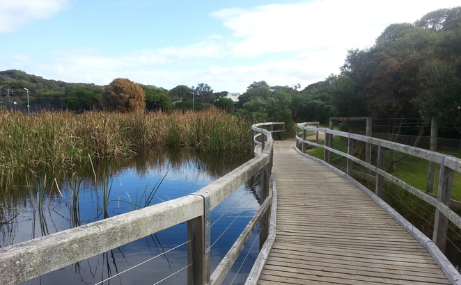 Ganes Reserve, Point Lonsdale, car park, Ocean Road, Wetlands, Pond, Walking track, bird-watching,