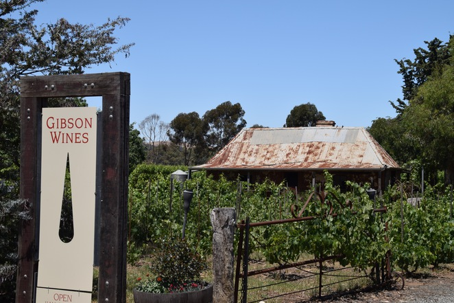 Gibson Wines, Light Pass, Sunday Fundays, Eden Valley, Barossa Valley, My Darlin', The Dirtman, Rob Gibson, Anne Gibson
