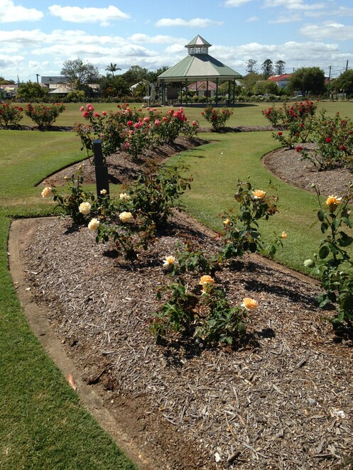 Maryborough, Queensland, Gardening, Gardens, Open Days, Free, Fun Things to Do, Learn Something, Community Events