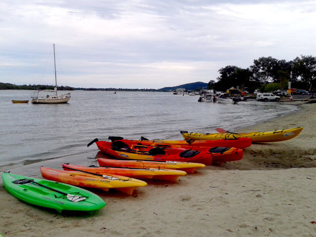Stand up paddle boards and kayaks at Noosaville
