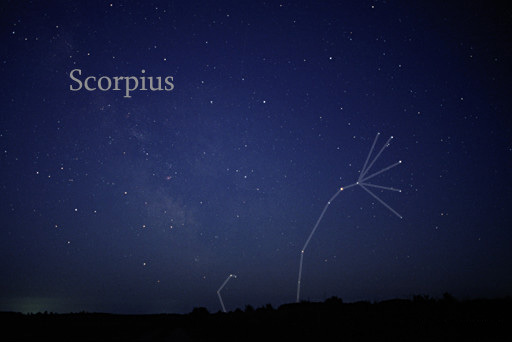 Photo of the constellation Scorpius courtesy of Tell Credner @ Wikimedia Commons