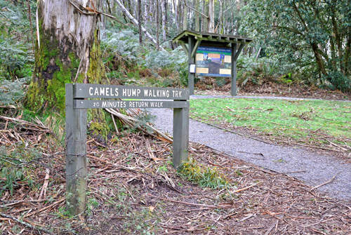 Victoria Mount Macedon Macedon Ranges Park Parks Picnics Family Outings