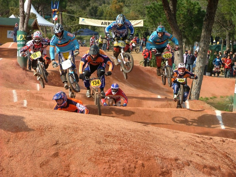 Bmx sa state titles for essays
