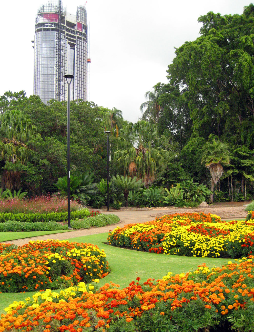 Brisbane 39 s best park gardens brisbane for City park botanical garden