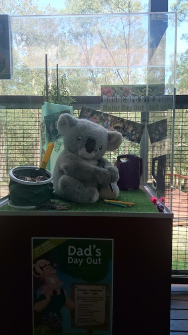 Dad's Day Out, Father's Day, indigiscapes, redlands city council, bushcare, landcare,