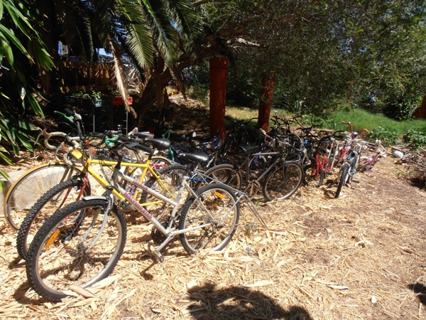 Be sure to donate your old and unloved bikes to the FERN Community Garden!