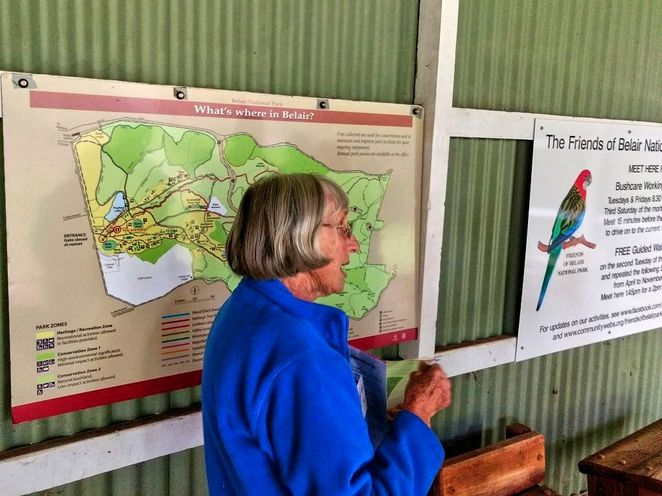 Free Guided Walks, Belair National Park, Guided Walks, Friends of Belair National Park, native, national park, free, plants, Belair, tour guide
