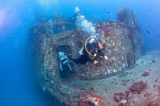 Gift ideas for adventurous dads, birthdays, Father's Day, Christmas, buccaneering streak, Sunreef Mooloolaba, diving, ex-HMAS Brisbane, best wreck sites, night dives, Mudjimba Island, Wobby Rock, Caves and Hanging Rock, Flinders Reef, marine sanctuary, Moreton Bay Marine Park, Grey Nurse Shark Dives, Halloween Night Dive, humpback whale experiences, whale watching, swimming with whales, snorkel Mudjimba Island, hire bikes, hire kayaks, hire stand-up paddle boards, hire boats, hire jet skis, Tree Top Challenge Adventure Park, Big Pineapple, Tarzan type dads, Sixteen top breweries, ExBEERience tour, Sunshine Coast Craft Beer Tours, snake catching tours, Sunshine Coast Snake Catchers 24/7, gift cards, vouchers, gift giving is all wrapped up