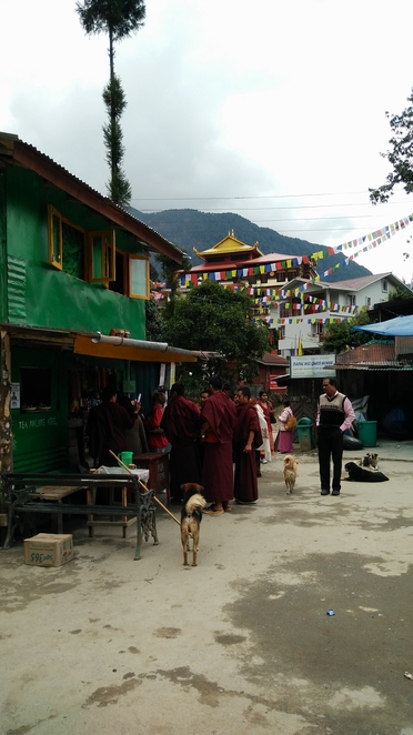 Khecheopalri Lake, Sikkim, Yuksom, Pelling, Tara, footprint, Monks, Chai