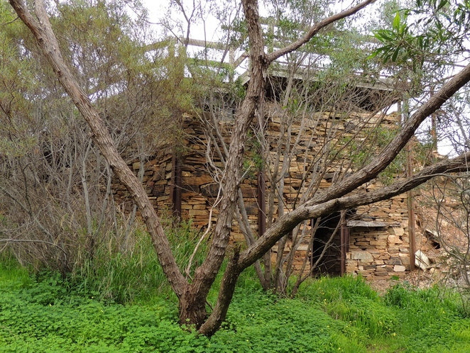 linear park, dry creek, walk, yatala, walking trail, gaol, prisoners, history, creek