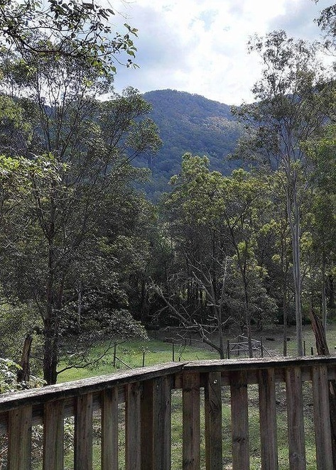 lyell deer sanctuary, mountains, trees, view, mount samson