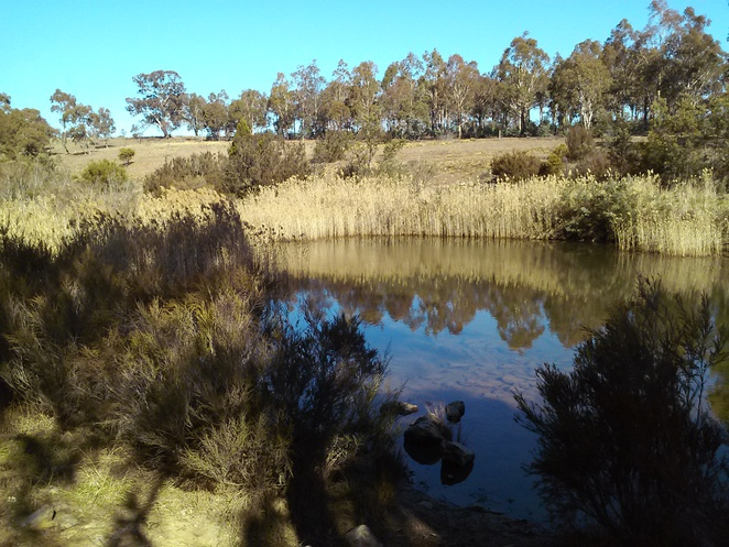 Molonglo Gorge recreation area, ACT