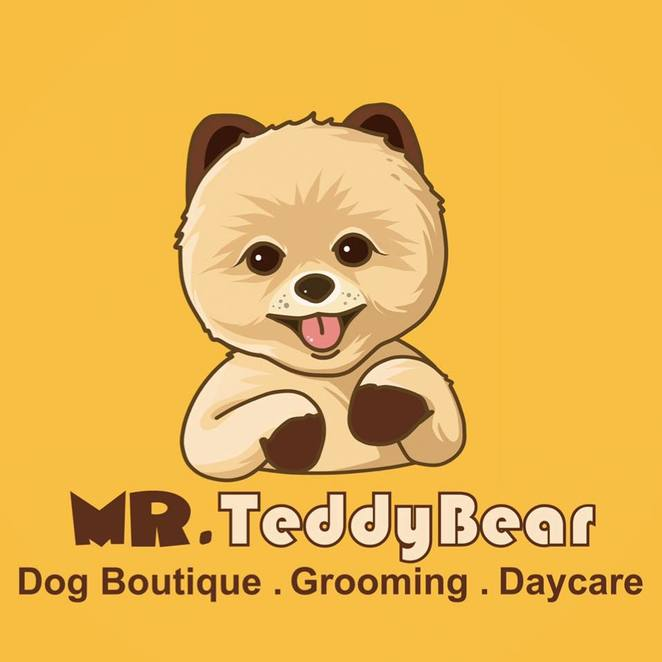 mr teddy bear dog boutique grooming salon, Bowen hills, brisbane, dog event, dog friendly, free, free entry, shopping, John muir photography, Photo Booth, market stalls, pet shop, daycare, northern suburbs, inner city suburbs