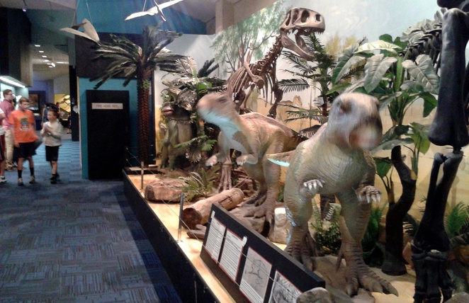 national dinosaur museum, canberra, ACT, gold creek village, families, kids,