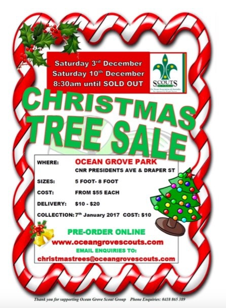 Ocean Grove Scouts, Christmas Tree Sale 2016, Real Christmas trees, Geelong, Bellarine