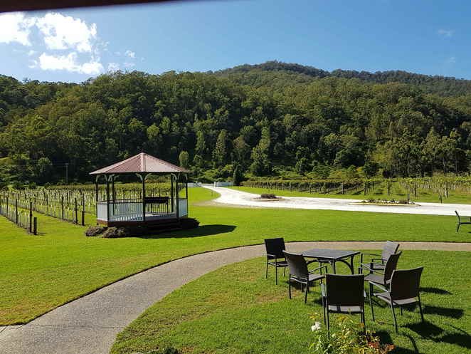O'Reilly's Canungra Valley Vineyards, breakfast, Gold Coast Hinterland, Canungra, picnic area, creek, lunch, morning tea, afternoon tea