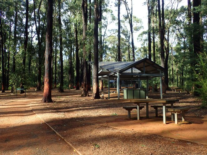 picnic area walking hiking national park bbq