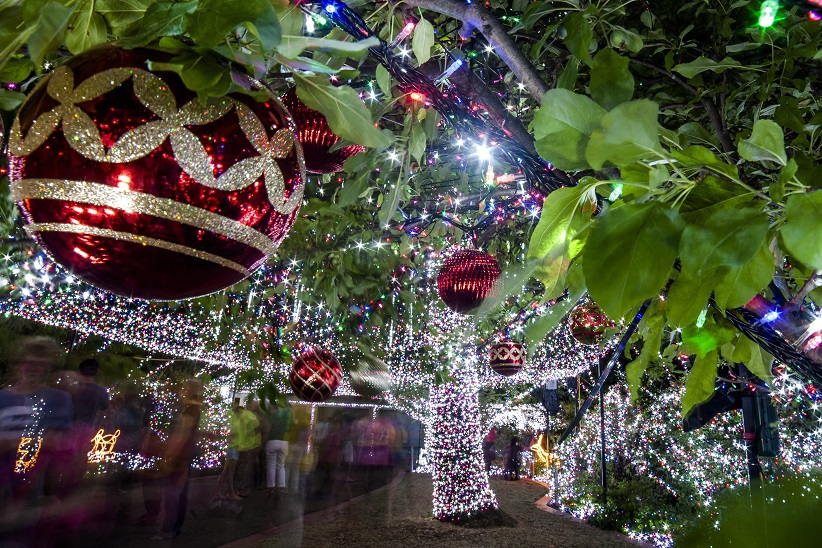 Christmas in Canberra