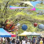 Wallaby Creek Festival 2013, Rossville, Cooktown, Cairns, Daintree, music